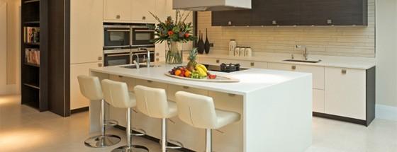 Contemporary Kitchen 2