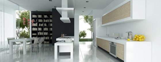 Contemporary Kitchen 5